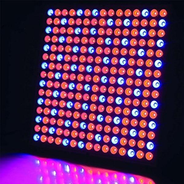 45W Grow Light Panel Light Hydroponics Lamps AC85-265V SMD3528 Rojo + Azul + Naranja Para la planta de floración Interior Grow Carpa Led