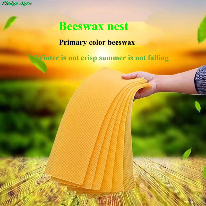 Beeswax Foundation For Bees Sheet Tool Bee Honeycomb Beekeeping Agriculture Honey Beekeeper Beehive Tools Handmade Candle