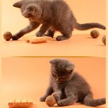 Natural Catnip Treat Ball