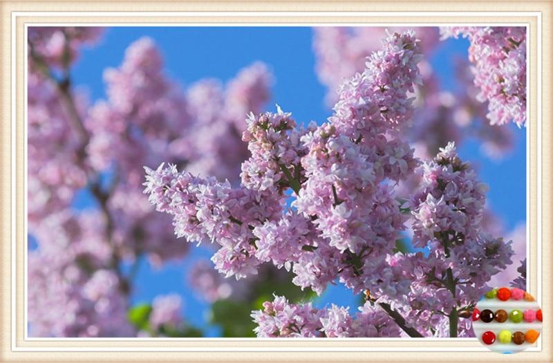 Весна Обои Рабочий Стол Бесплатно