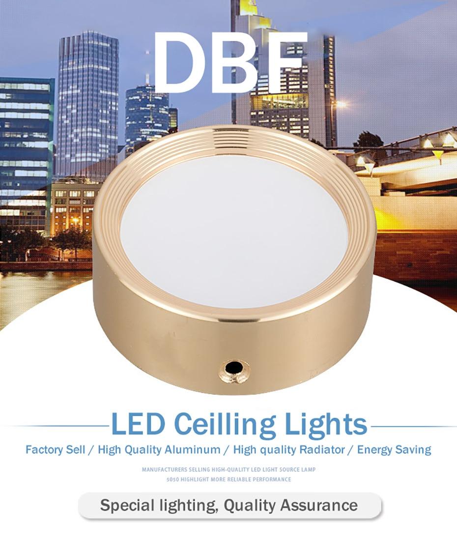 Ceiling Lamp- (1)