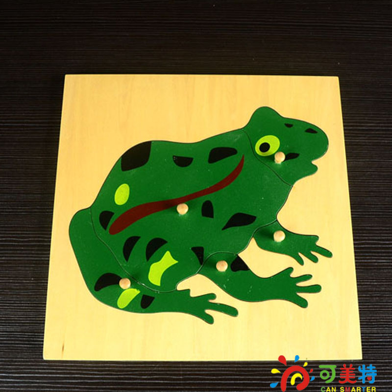Montessori Materials Frog Puzzle Beech Wood Science toys Early educational toys  Can Smarter materials science in microelectronics i