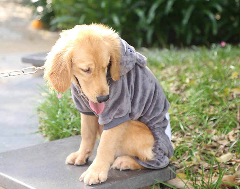 Autumn And Winter Dog Sweater Pet Hoodie Large And Medium Sized Dogs