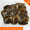 Mixed Random Colors Pearls Oysters 50pcs 6 7mm Saltwater Akoya 10pcs In One Vacuum Bag Big