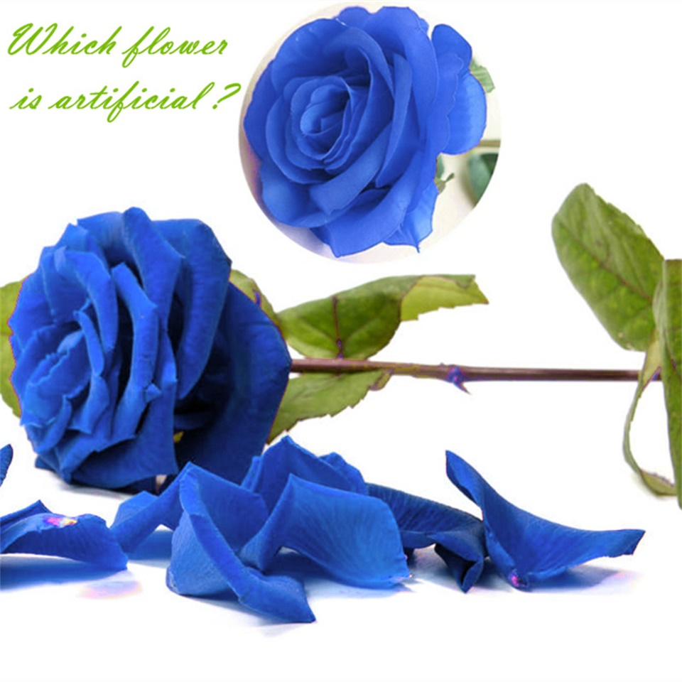 1pc Silk Roses Artificial Flowers Wedding Decoration Fake White Blue Green Pink Red Purple