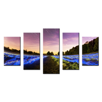 DIY Photo Poster Canvas Beautiful Meteor Modular Pictures Wall Canvas Art For Home Decor Sitting Room