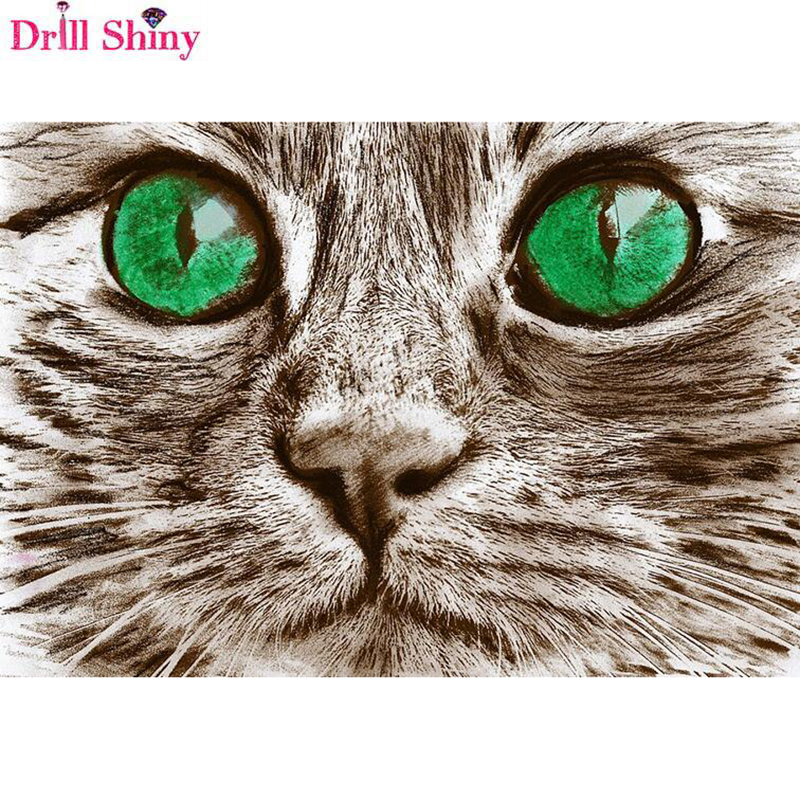 5D Diy Square/Round Diamond Painting Orchid Mosaics Cross-stitch Green Eyes Cat Diamond Embroidery Stone Decoration Diamant <font><b>r308</b></font> image