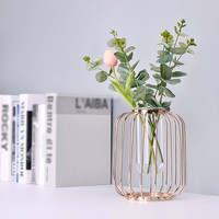 Nordic Minimalist Pot Flower Vase Iron Geometric Brief Vase Garden Decoration Flower Plant Rack Ornaments Office Desktop Balcony