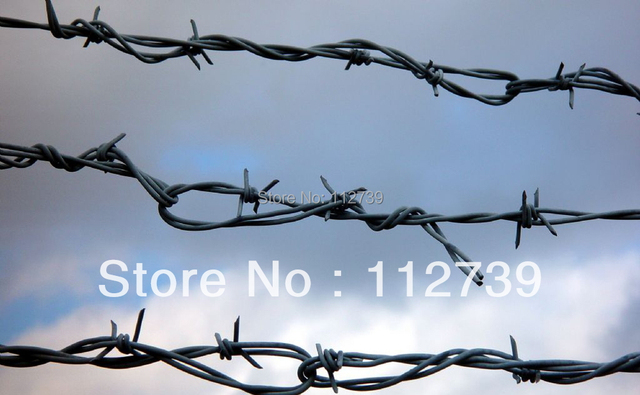 Barbed Wire Black Wire in Material and Convenient to Install