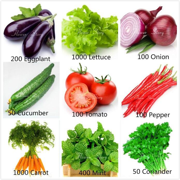 Popular Alternative Garden Supply Buy Cheap Alternative Garden