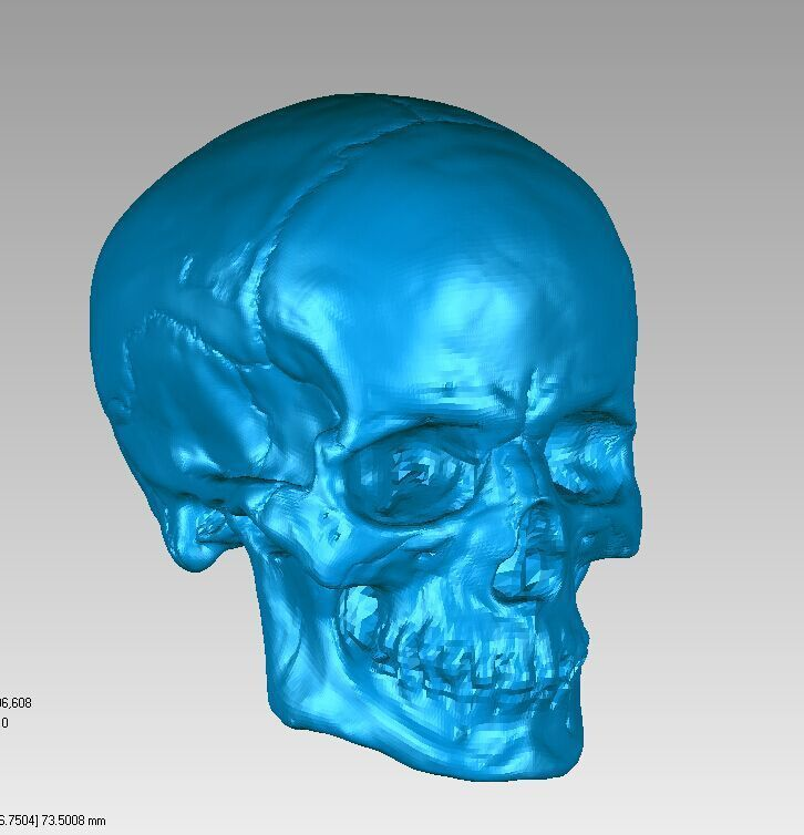 3D Model For Cnc 3D Carved Figure Sculpture Machine In STL File Format Skull Head
