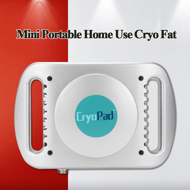 2019 New Design Hot Sale Mini Portable Home Frozen Fat Freezer Weight Loss Machine Body Shaping Machine Weight Loss Machine