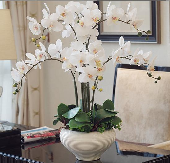 Orchid Phalaenopsis Real Touch Flower With Leaves Artificial Orchids Arrangement Diy Arrange No Vase In Dried Flowers From Home Garden