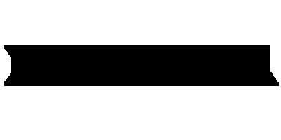 Лого бренда DAIWA из Китая