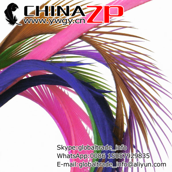 Gold Supplier CHINAZP Factory 200pcs/lot 8-10 Wholesale Top Quality Dyed Mix Colors Goose Biots Feathers