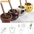 8 unidades/pacote Engraçado Brotando HB Lápis De Madeira Preto com Sementes de Plantas de Interior DIY Mini Bonsai de Presente Do Estudante