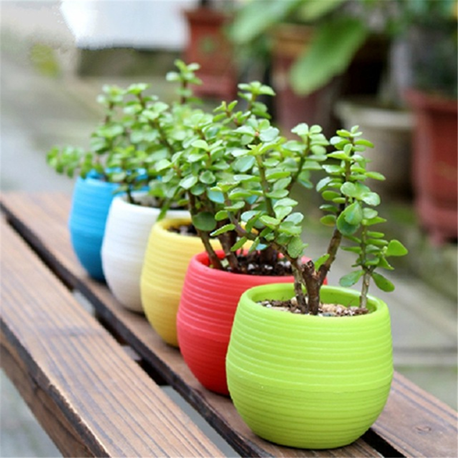 Colorful Mini Flower Pots Planting Pot Gardening Plastic Plant Flowerpot For Home Office Decoration Garden Supplies In Planters From