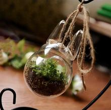 Creative glass hydroponic flowers - totoro vase Moss fleshy ecological bottle features present