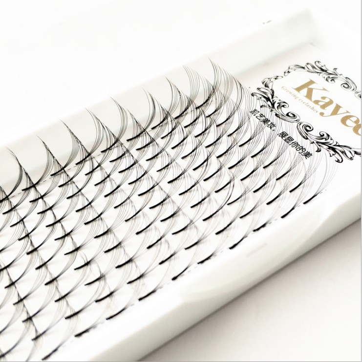 New 6D Russian Volume Eyelashes Extension Short Stem Pre made Fans Lash Hot Selling Eyelash Individual Extensions Free Shipping