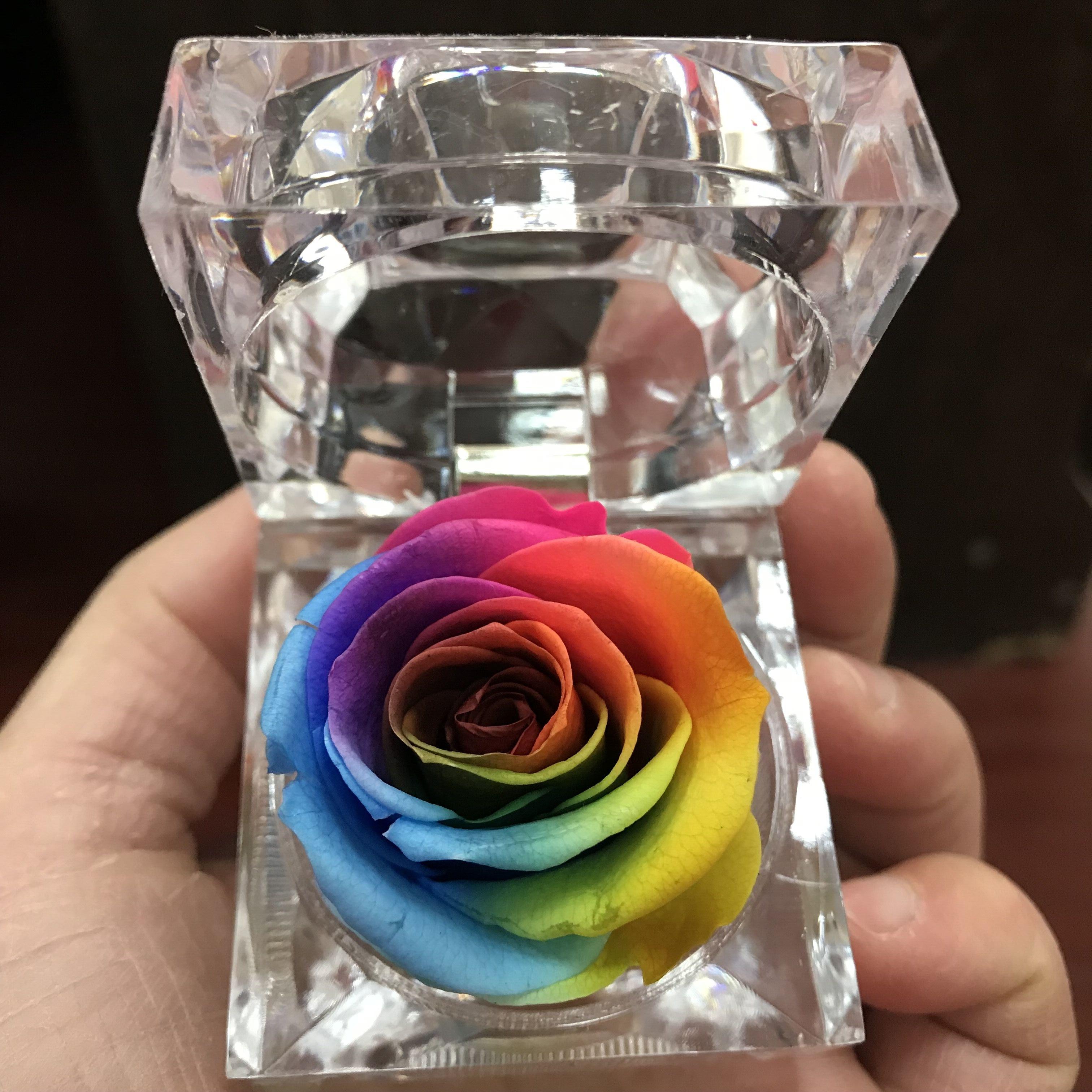 Ohranjena rožna večna škatla za rože, pisane vrtnice, privesek za ključe, valentinovo darilo, naravno, resnično božično darilo