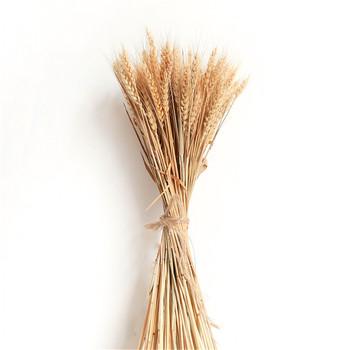 100 sztuk paczka pielenie decor kłosy pszenicy kwiat surowy kolor suszone naturalne kwiaty bukiet pszenicy bez doniczki tanie i dobre opinie CN (pochodzenie) LY19070303 Suszone kwiaty HYBRID Bukiet kwiatów Ślub Rattan Dried wheat ears bouquet Natural wheats 2g pc