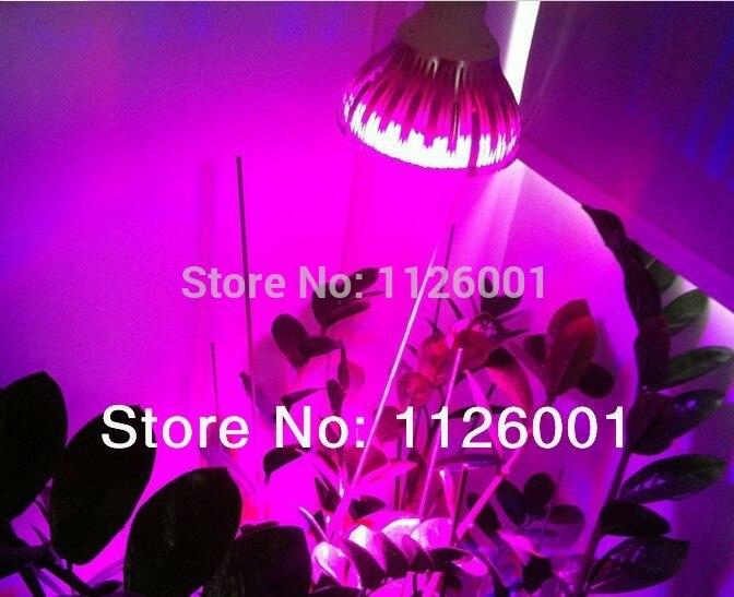2015 New Special Offer Ce 2pcs lot Par30 font b Led b font Grow Lights With