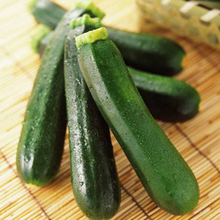 "20 Summer Squash ""Black Beauty Zucchini"" (Cucurbita pepo) Seeds~organic"