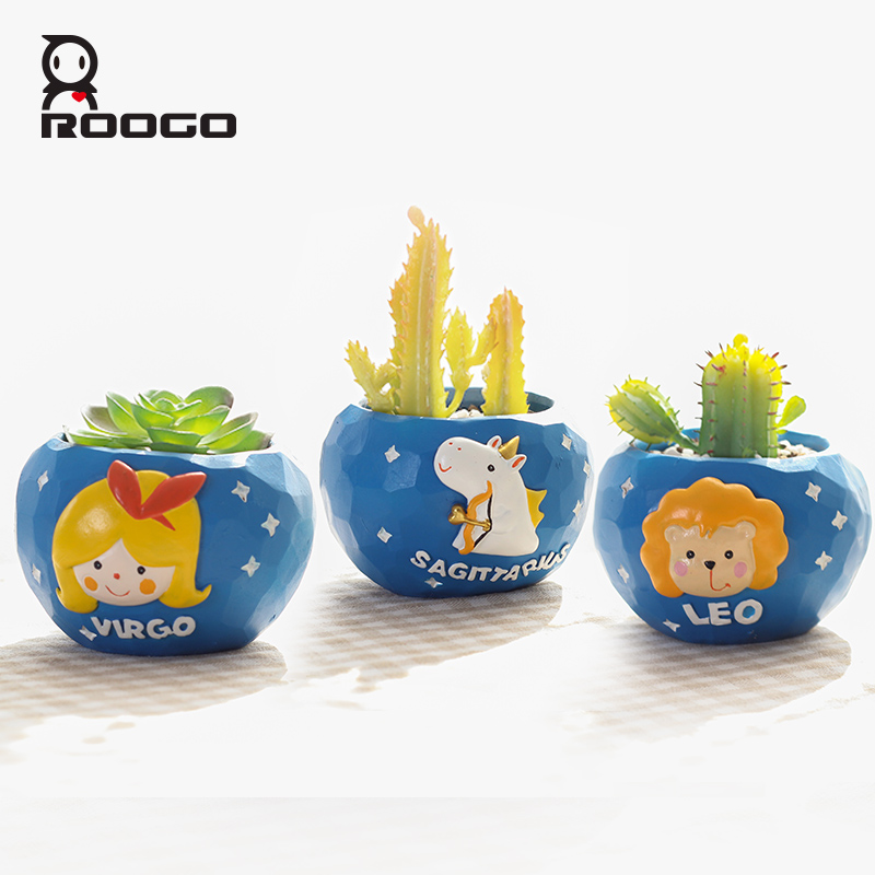 Image 4 - Roogo mini blue 12 horoscopes flowerpot landscape plant bonsai succulent pots desk garden yard decoration best gift items-in Flower Pots & Planters from Home & Garden