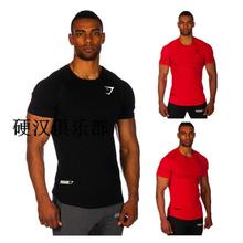 Shark male slim 100% short-sleeve cotton t-shirt fitness bodybuilding loose men shirts brand clothing casual muscle shirts