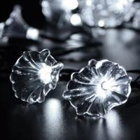 Xmas Christmas 20 LED Morning Glory Flower Solar String Lights 5 Feet Fairy Lamp Indoor Outdoor
