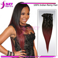 Factory price!!!!100% Remy Indian Clip In Human Hair Extensions,18, 20, 22, 24 ,26inch Ombre Hair Extensions Clip In Freeship