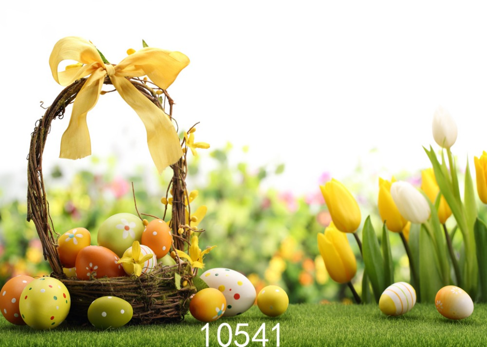 SHENGYONGBAO Vinyl Custom Photography Backdrops Prop Easter day Theme Digital Photo Studio Background 10541 easter day basket branch bunny photo studio background easter photography backdrops page 8