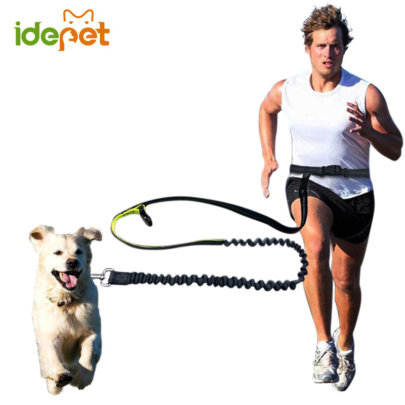 Elastic Waist Dog Leash For Jogging Walking Pet Dog Product Adjustable Nylon Dog Leash With Reflective Strip hands free dog leas