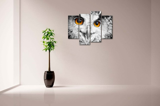 Owl Head Patterned Framed Wall Canvas Print
