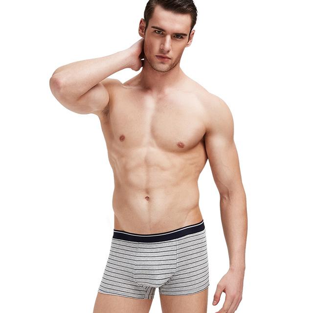 Innersy Shorts Mens 4Pcslot Mens Underwear Boxers Cotton Breathable Boxer Men Boxer Printed Short Boxers Underwear Short