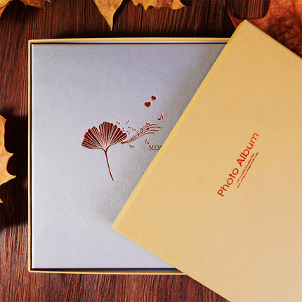 Bricolage Film Photo Album fait à la main pâte Photo galerie livre personnalisé romantique mémoire Record pour bébé amoureux famille mariage cadeau