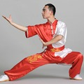 Chinese Unisex short sleeves martial arts kungfu tai chi costumes clothing sets Children & Adult kung fu uniforms suits
