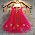 Princesa vestido del otoño del verano de la muchacha de la nueva manera 2 3 4 5 6 7 8 9 10 años niño tutú de gasa vestido