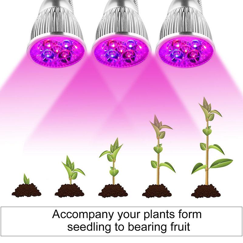 LumiParty 10W Dual Head LED Full Spectrum Plant Grow Light for Indoor Hydroponic Plant Cultivation
