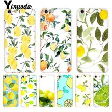 Yinuoda Fruit Fresh Lemon Colorful Cute On Sale Luxury Cool Phone Accessories Ca