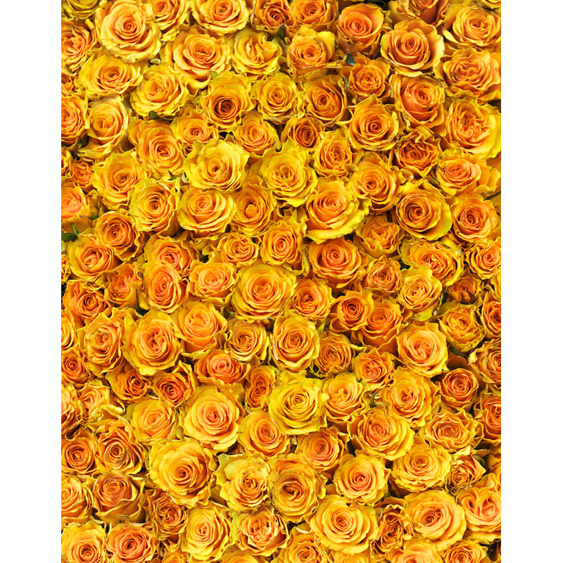 Custom Washable Wrinkle Resistant Print 3d Yellow Rose