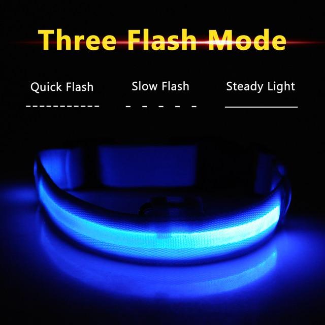 USB Charged LED Dog Collar 4
