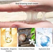 Snail Repair Whitening Facial Cream Day Cream Anti Wrinkle