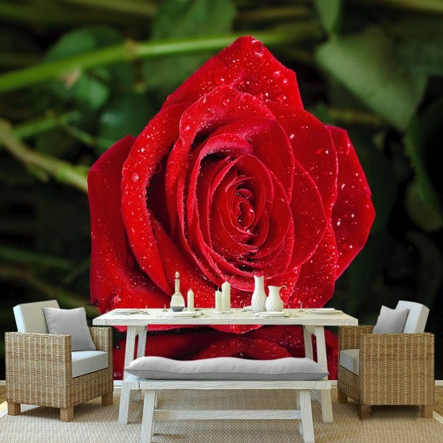 Photo Wallpaper Romantic Red Rose Reflections Tv Wall Decoration
