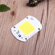 COB Chip Lamp Bulb Lamp LED Lights High Power Integrated F6040 20W AC 220V 110V White/Warm White for DIY Flood Light