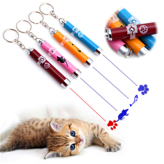 Cat Laser Pointer Pen Interactive Cats