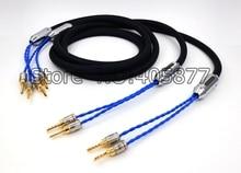 Siltech 25th Klasyczny Rocznica 770L kabel głośnikowy srebrny-gold przewody z pudełkiem wtyk Bananowy kabel Głośnikowy