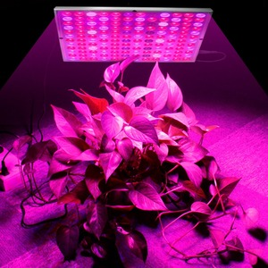 Image 5 - Growing Lamps LED Grow Light 25W 45W AC85 265V Full Spectrum Plant Lighting Fitolampy For Plants Flowers Seedling Cultivation