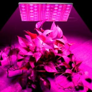 Image 5 - Phát triển Đèn LED Phát Triển Ánh Sáng 25W 45W AC85 265V Suốt Vật Có Chiếu Sáng Fitolampy Cho Cây Hoa Cây Giống Trồng Trọt