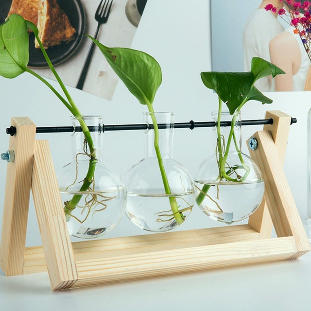 Newest Desktop Vase Glass Planter Bulb with Retro Solid Wooden Stand and Metal Swivel Holder for Hydroponics Plants Home Office